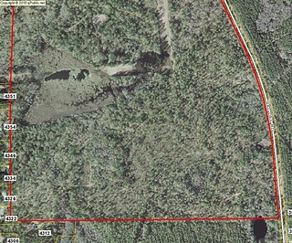 Sinkhole on Tax Commissioner map