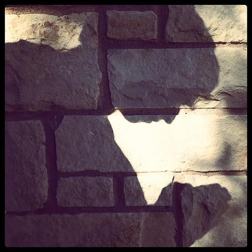 #worship #prayer #shadow #hschallenge