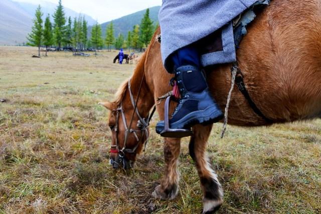 Horse trek in Mongolia IKILOMALLA matkablogi travel blog (10)