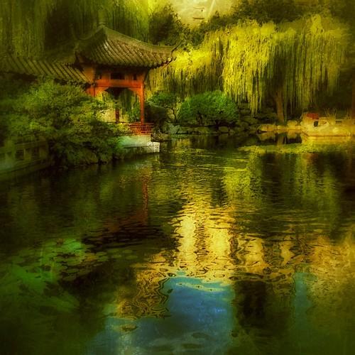 Chinese Garden of Friendship #sydney #australia by @MySoDotCom