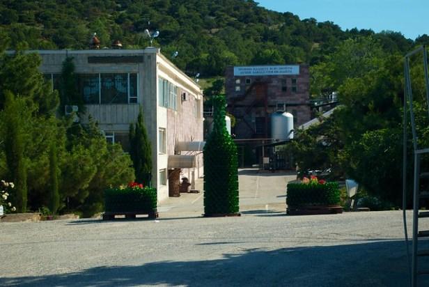 Завод шампанских вин Новый свет, Крым