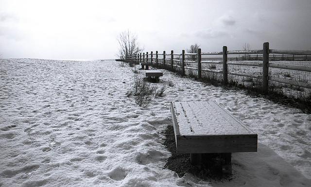 Snow, Not Sand