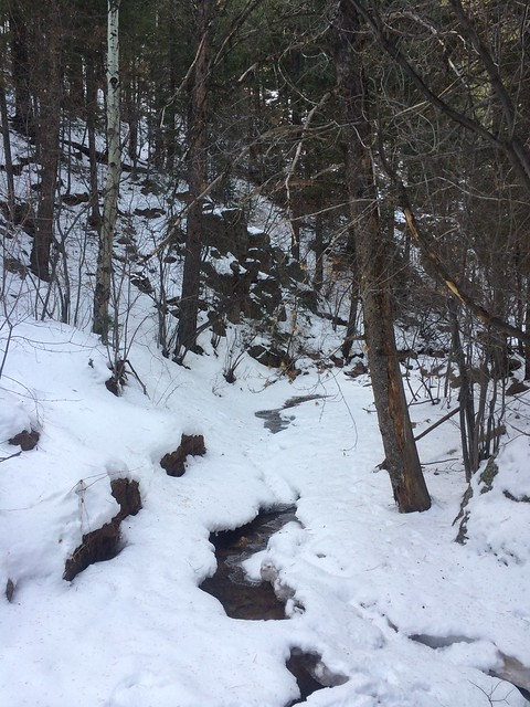 Picture from the Seven Bridges Trail