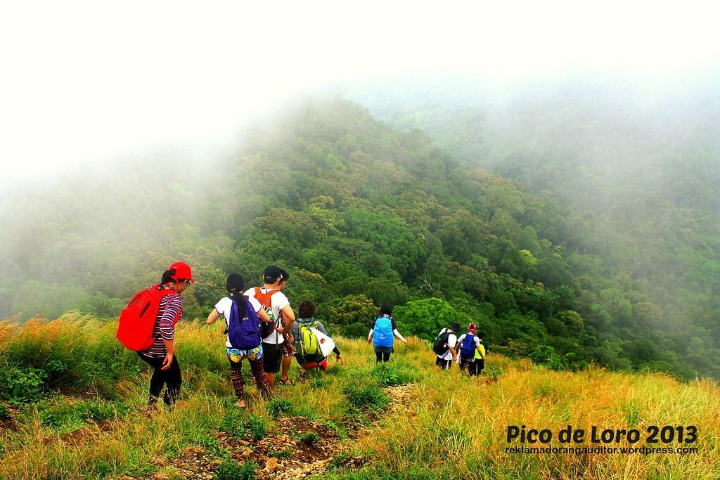Pico_21
