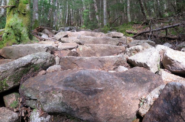 Tecumseh Trail Ski Area Rock-Steps