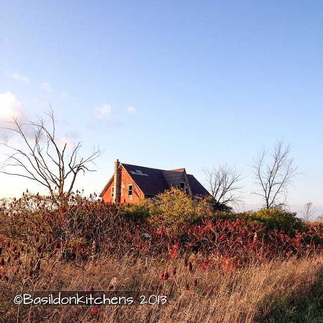 Oct 18 - still {this lonely, abandoned house stands very still.} I like to imagine what stories it has to tell; what lives were lived in it. #fmsphotoaday #still #house #abandoned #rural #decay #princeedwardcounty