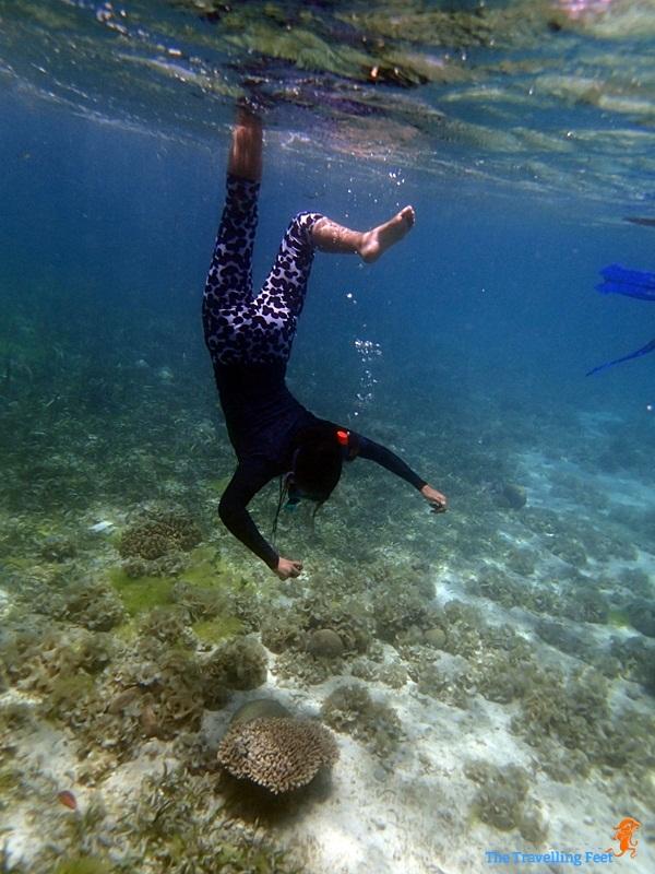 snorkelling at Terra Manna Resort