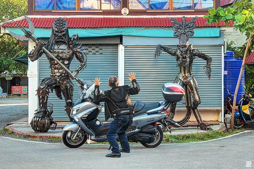 Aliens in Ko Samui