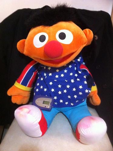 Ernie in his LENA gear