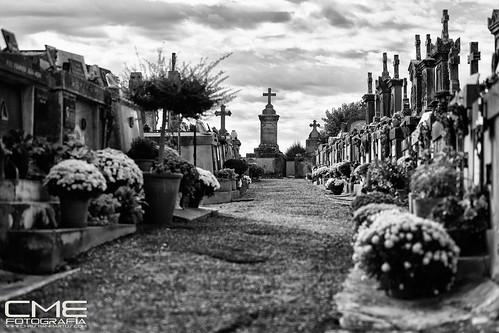 A la Cite de Carcassonne by Christyan Martos