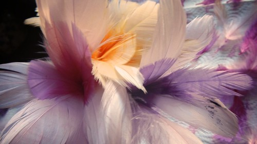 Feather Bouquet 34
