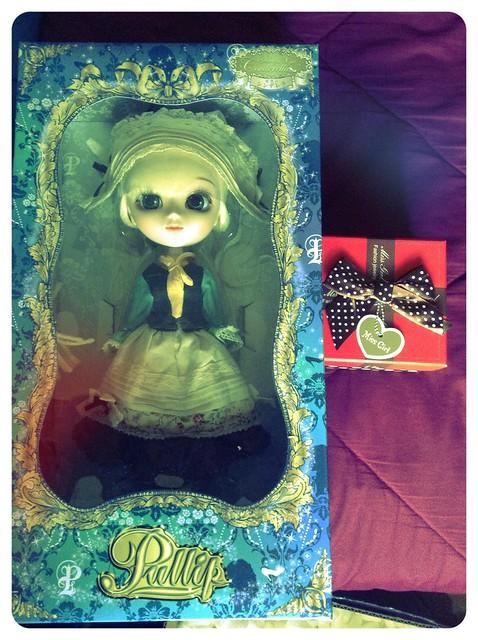 Dahlia in box.