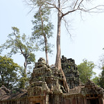 10 Templos de Angkor Small 53