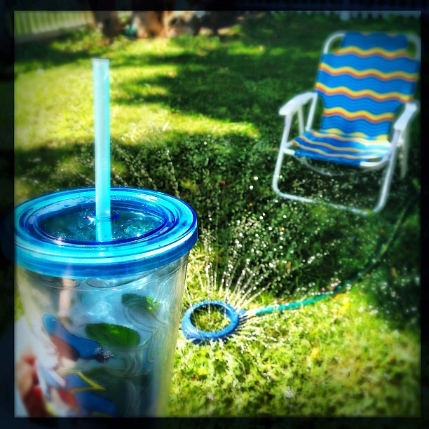 We've reached the sitting-with-our-legs-in-the-sprinkler-while-drinking-frosty-beverages portion of our holiday.