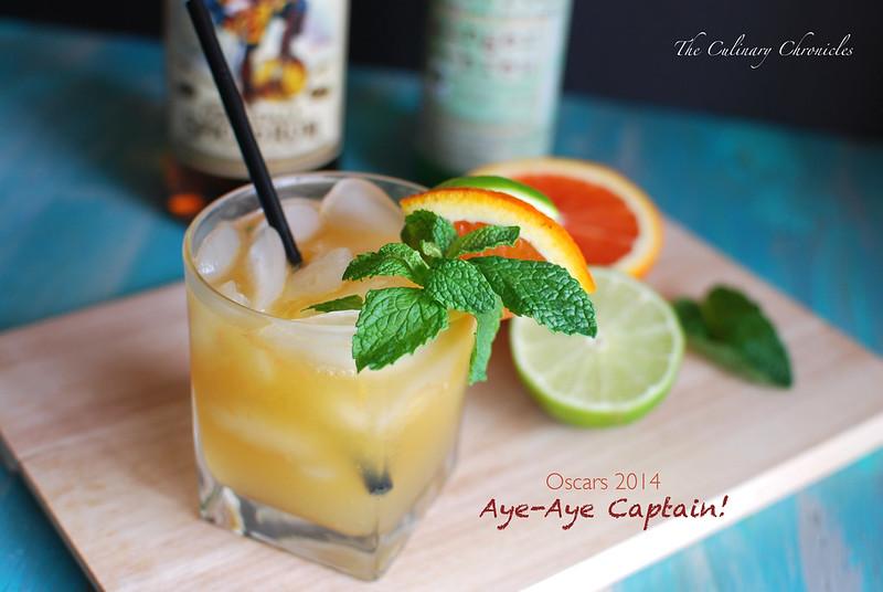 DSC_Aye-Aye Captain