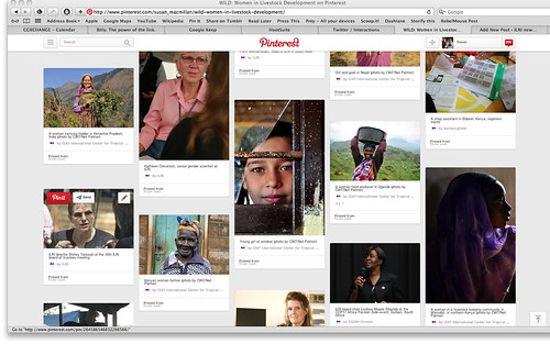 WILD Pinterest screen shot 5