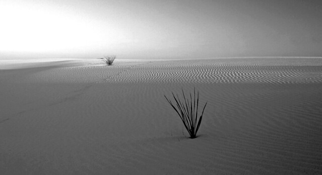 20060924   White Sands National Monument, New Mexico 042a