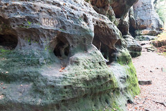 Der Fels lebt