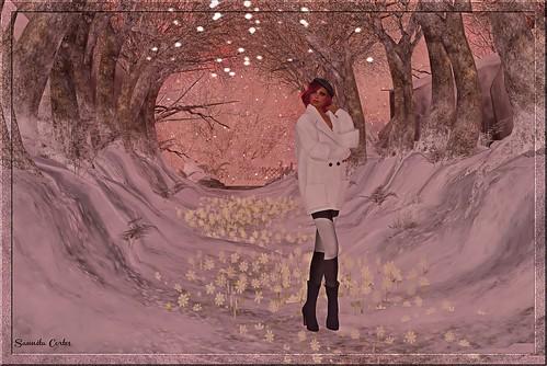 winter2a