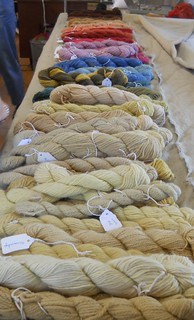Natural Dyeing with Dede Styles