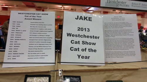 westchesterjakeCOYE_7521