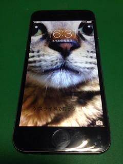 105_iPhone6のフロントパネルガラス割れ