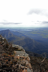 view from Mt William (3)