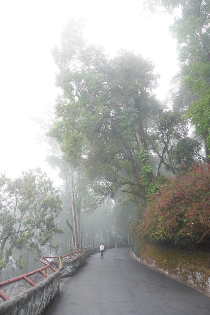 india_sikkim_day9_50