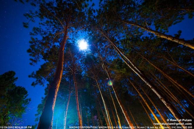 Moonlight Sonata, 2nd Movement