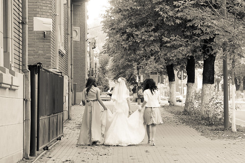 Day 151 - To the wedding by Alexandru Georgescu