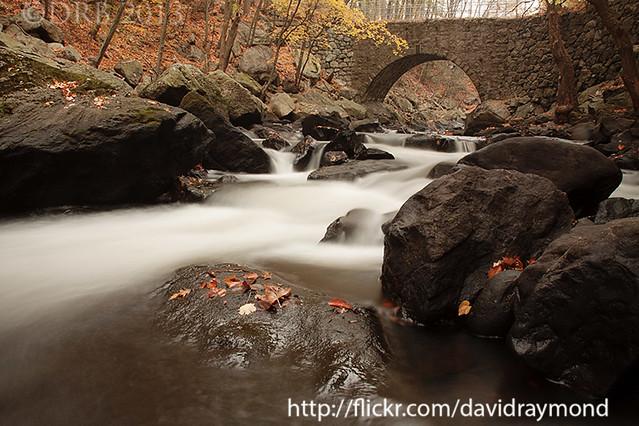 New Jersey Scenery Photo