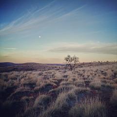 moonrise Mount Ive