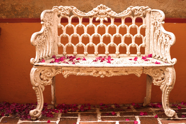 Bench and Petals