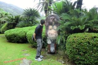 CIMG1129 El Tanuki es mas grade que yo! Infierno Umi Jigoku (Beppu) 13-07-2010 copia