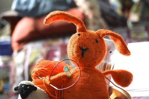 bunny of envy
