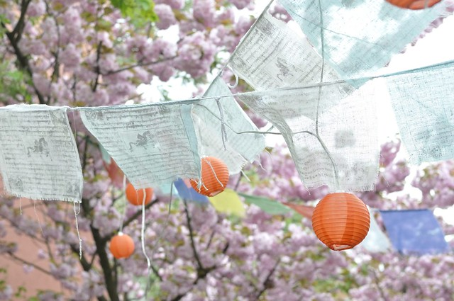 Cherry Blossoms and Buddist Prayer Banners