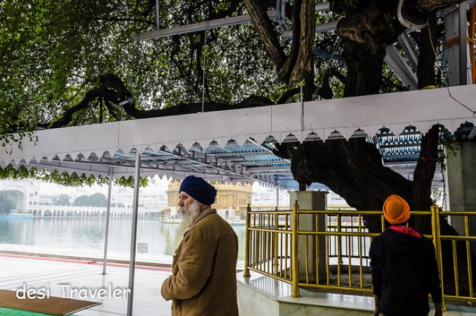 Lachee Beri in Shree Harmandir Sahib Amritsar