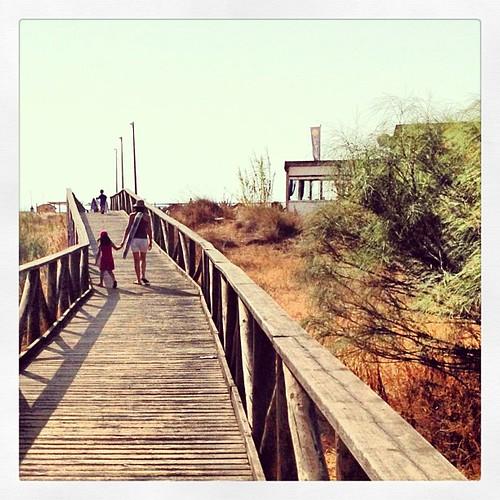 Camino de la playa. by jmanfer