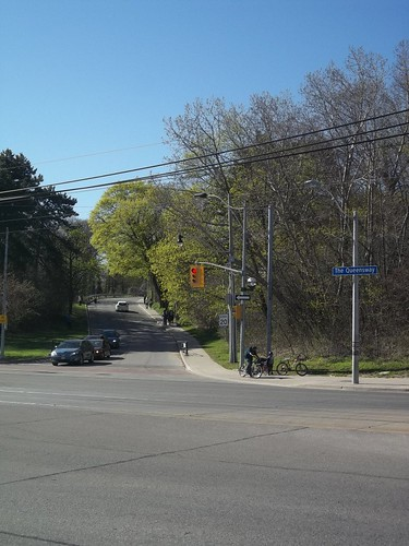 Looking north into High Park from the Queensway