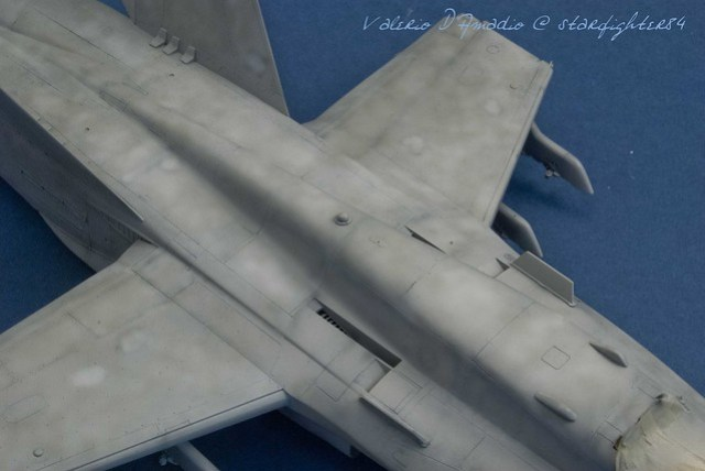Hornet 123