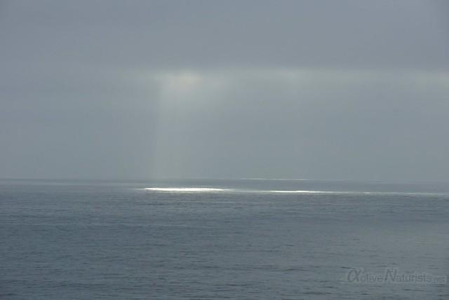 view 0000 Big Sur, CA, USA