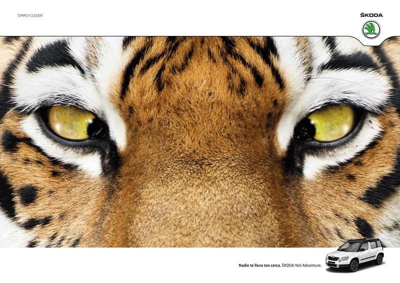 Skoda - Tiger