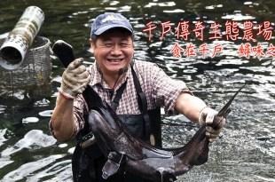 新北三峽|千戶傳奇農場-田媽媽餐廳:食在千戶  鱘味之旅