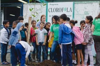MEIOAMBIENTE_CLOROFILA (9) - Cópia