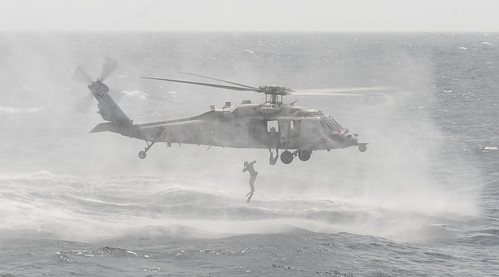 Sailor jumps from Sea Hawk into Arabian Sea. by Official U.S. Navy Imagery
