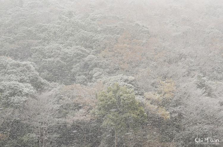 嵯峨野觀光鐵道-冬雪10.jpg