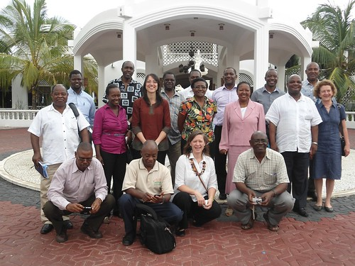 Tanzania dairy value chain impact pathways workshop