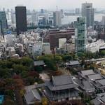 Tokyo-Ginza-Roppongi-25