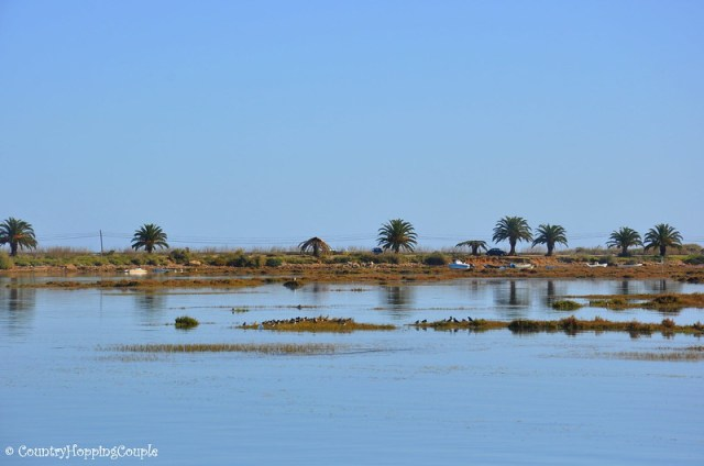 Ria Formosa Wetlands