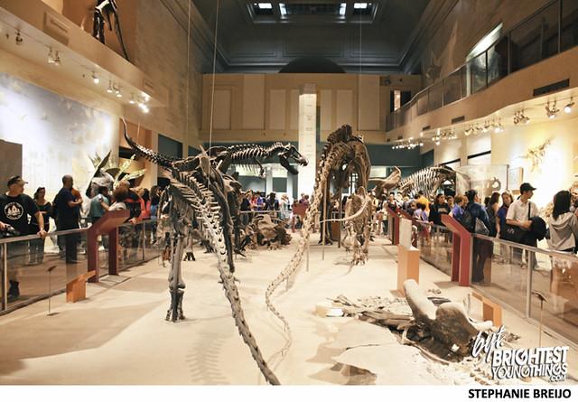 Smithsonian Dinosaur Exhibit Photos Brightest Young Things Stephanie Breijo17
